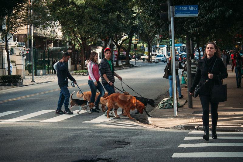 foto-ruas-bairro-higienopolis-sp