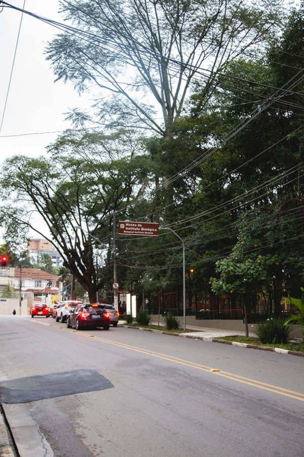 vila-mariana-sao-paulo